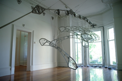 Underwing, Laura Woodward 2010-11